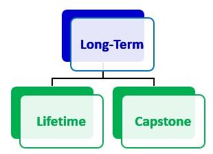Lifetime goals and capstone goals